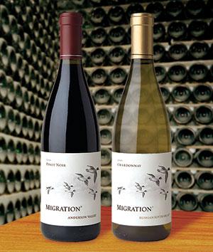 Migration Wines